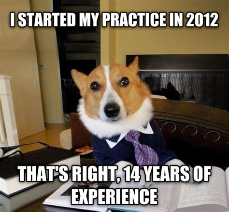 Accountant Dog Meme - livememe com lawyer dog