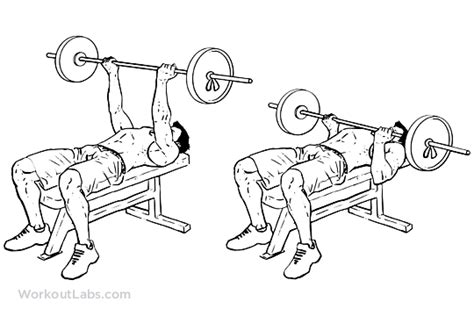 reverse grip bench press reverse triceps bench press workoutlabs
