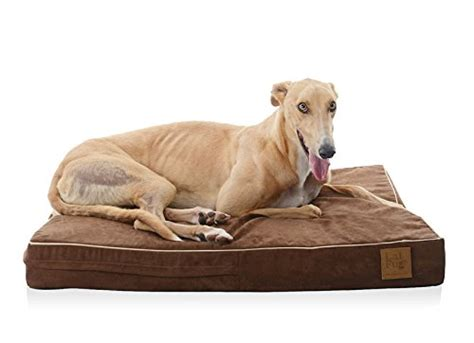 hypoallergenic dog beds best hypoallergenic dog beds dogvills