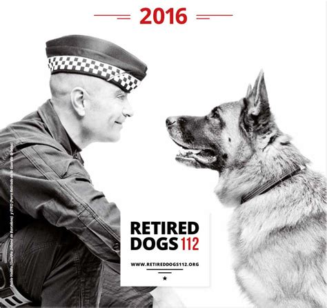 retired dogs retired dogs 112 primer calendario solidario www doogweb es
