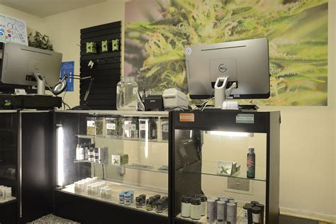 cannabis a guide for patients practitioners and caregivers books caregivers for in denver co westword