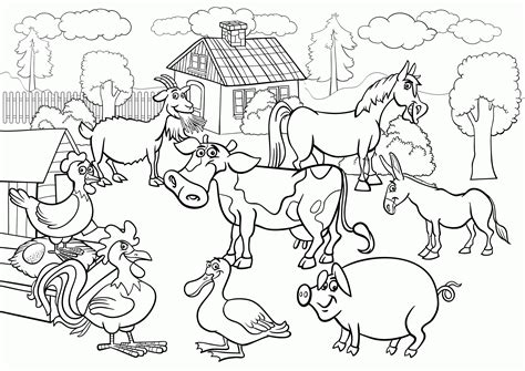 old macdonald farm coloring page coloring home