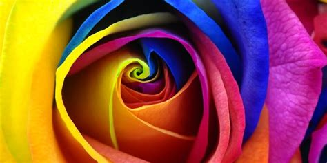all the colors of the rainbow the best color in feng shui the rainbow all colors bring