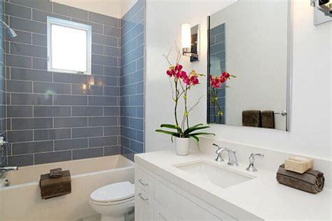badezimmer pflanzen ohne fenster pflanzen im badezimmer die besten vorschl 228 ge f 252 r sie