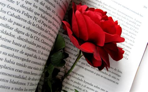 the roses books flowers in book wallpapers 2560x1600 1546335