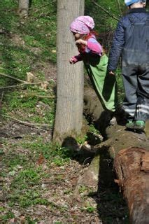 Lackieren In Geschlossenen Räumen by Urspiel Bewegung Im Wald Kinderwald