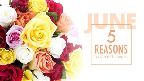 Reasons To Send Flowers by 5 Reasons To Send Flowers