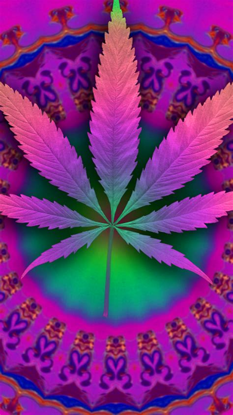 imagenes chidas weed fondos para whatsapp de mariguana im 225 genes wallpappers