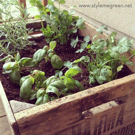 Diy Container Garden by Diy Container Herb Garden Garden