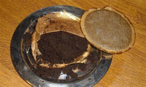 Pflanzen Die Schnecken Vertreiben by Mit Kaffeesatz Schnecken Vertreiben Schnecken Bek 228 Mpfen
