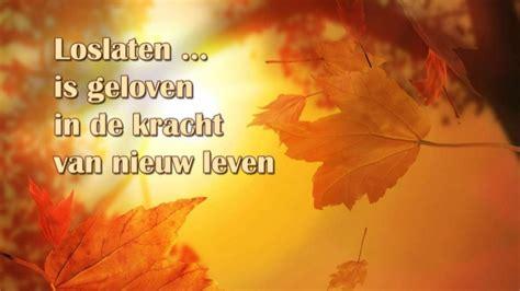 roeien zonder riemen loslaten is geloven in de kracht van nieuw leven