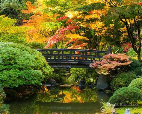 bridges images  pinterest bridges beautiful