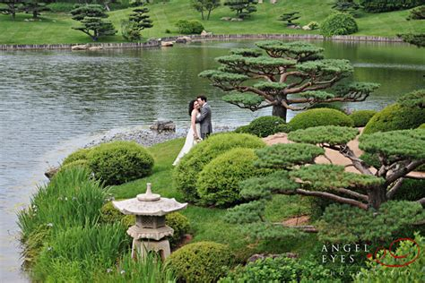 Chicago Botanic Garden Japanese Garden Photography 187 Archive 187 Chicago Botanic Gardens Wedding Gaby And Brad
