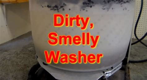 washing machine scent why does your washing machine smell washer smells