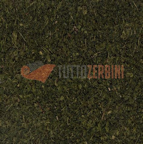 zerbino cocco su misura zerbini e tappeti personalizzati su misura cocco naturale