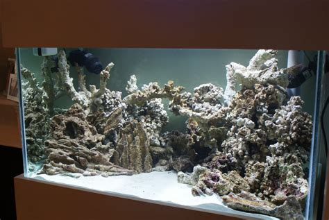 Live Rock Aquascaping Ideas 28 Images 17 Best Images