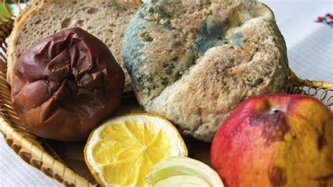 Minyak Oregano uap minyak kayu putih dan oregano dapat hilangkan jamur pada buah buahan