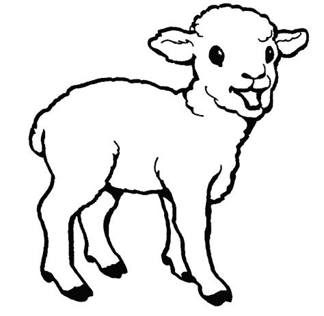 imagenes de ovejas faciles para dibujar image gallery ovejas para colorear
