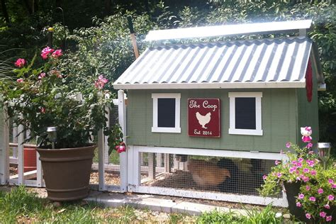 small backyard chicken coops for sale 100 61 diy chicken coop plans diy chicken coop and