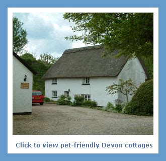 Cottages Uk Pet Friendly by Dogs Allowed Beaches In