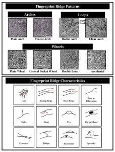 finger pattern meaning doreen s rockin 3rd grade