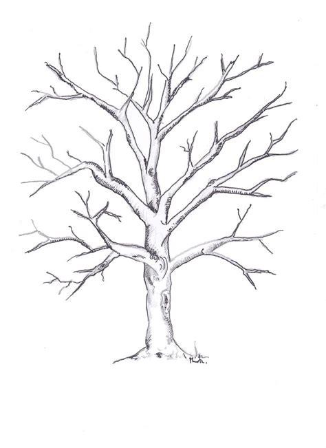imagenes de arboles otoñales 17 mejores ideas sobre dibujos de arboles secos en