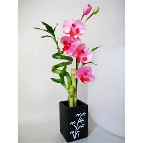 Caring For Flowers In A Vase Feng Shui House Plants Set Up Rules After The Feng Shui