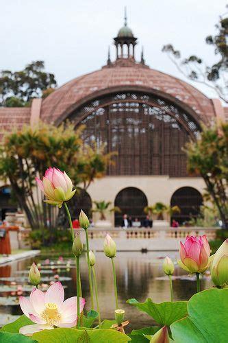 Botanical Garden Balboa Park Balboa Park San Diego Ca The Botanical Garden In San Diego Park California Pinterest
