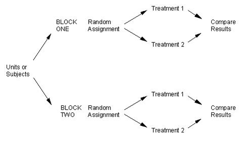 block design experiment definition block designs