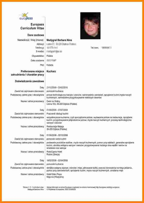 Modele Cv Recent by 5 Curriculum Vitae Exemplu Theorynpractice
