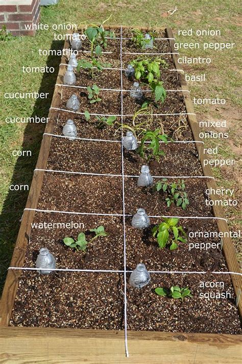 square vegetable garden best 25 square foot gardening ideas on square