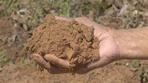 silt environmental impact rashid s blog an educational portal