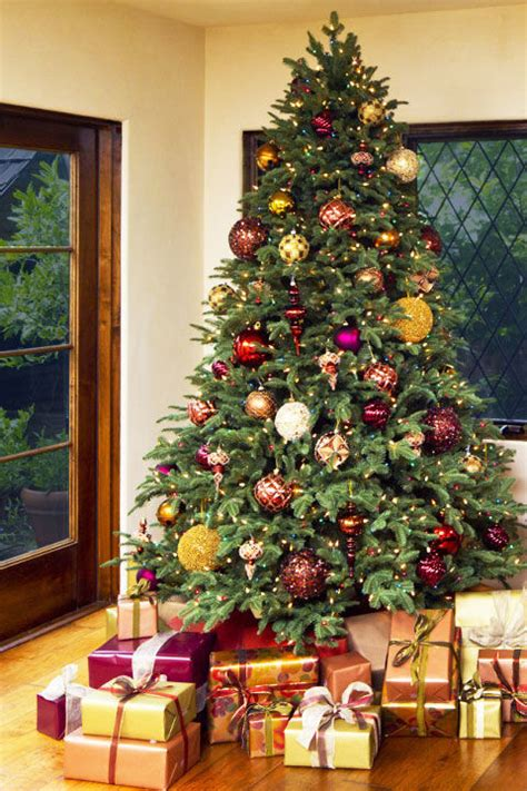 whats the best christmas tree 17 best artificial trees 2017 best trees feedinspire