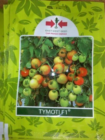Bibit Jagung Manis Di Surabaya benih jagung manis cap panah merah toko dian tani