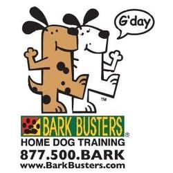 puppy classes seattle bark busters home loyal heights seattle wa verenigde staten yelp
