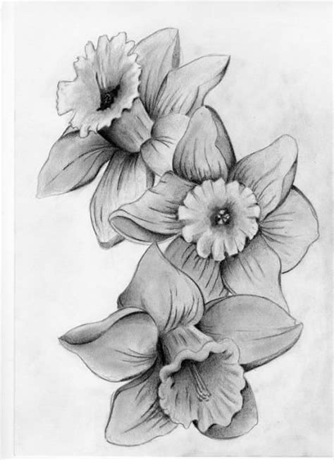 narcissus flower tattoo designs 25 best ideas about narcissus flower tattoos on