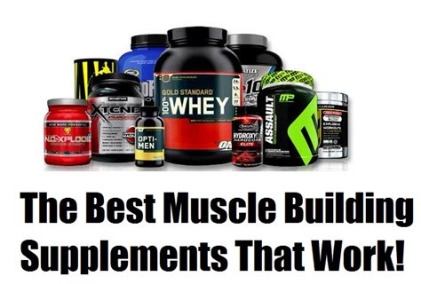 best building supplements for best building supplements that flat out work