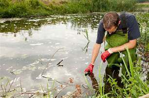 Environmental Analyst by Environmental Scientist Eco Canada