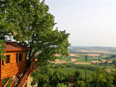 albero in casa treehotel dormire in una casa sull albero in svezia