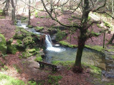 monte aloia nature park espanha 1000 images about galicia on pinterest santiago de