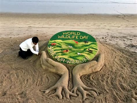 when is day celebrated in the world in pics world wildlife day celebrated across the world