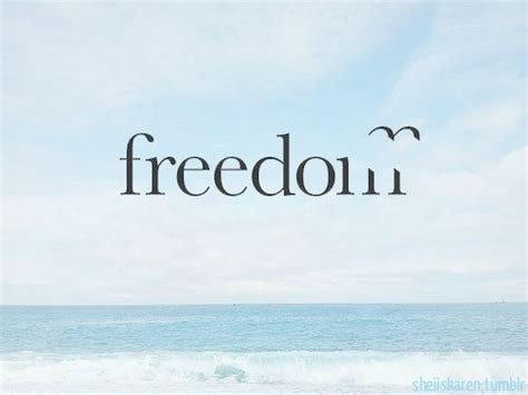 Freedom Quotes Quotes About Freedom And Birds Quotesgram