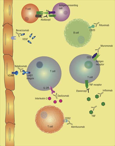 best neurology journals monoclonal antibody therapies and neurologic disorders