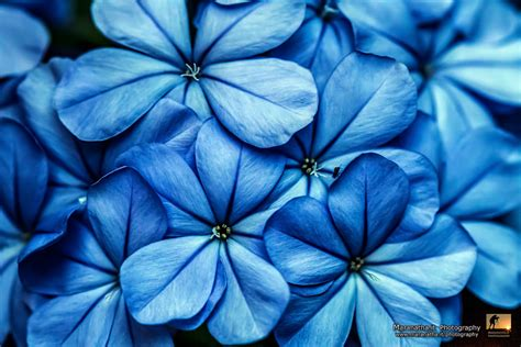 pattern and shape photography 500px blog 187 the passionate photographer community 187 25