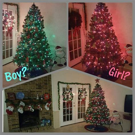 christmasgender reveal gender reveal madinbelgrade