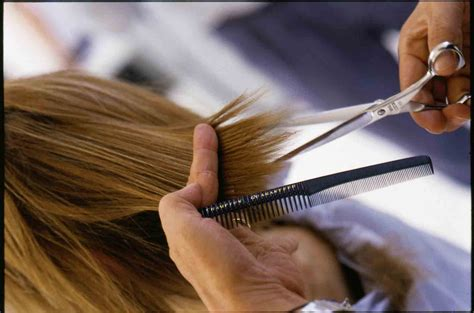 services hair cutting zuri salon