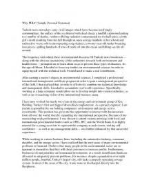 sle personal statement engineering sle resume format