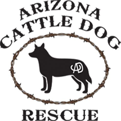 az cattle rescue arizona cattle rescue gets grant healthy paws