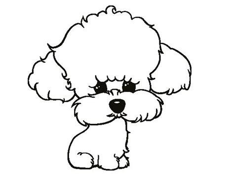 dibujos de perros para colorear dibujosnet dibujo de cachorro de poodle para colorear dibujos net