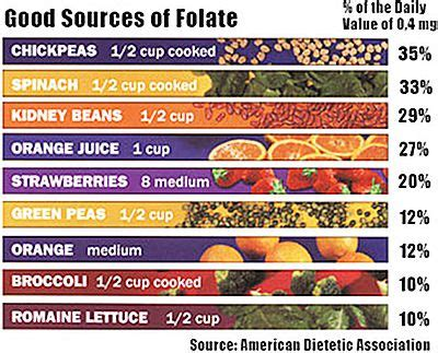 best sources of folic acid 10 foods that increase count